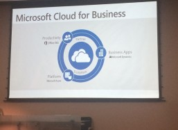 Microsoft Cloud for Business and Elva DMS